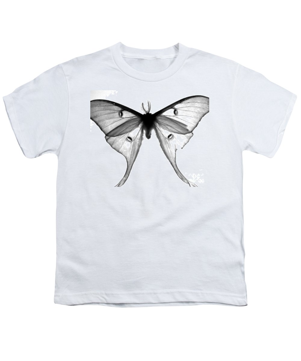 Moth Youth T-Shirt featuring the photograph Moth by Amanda Barcon