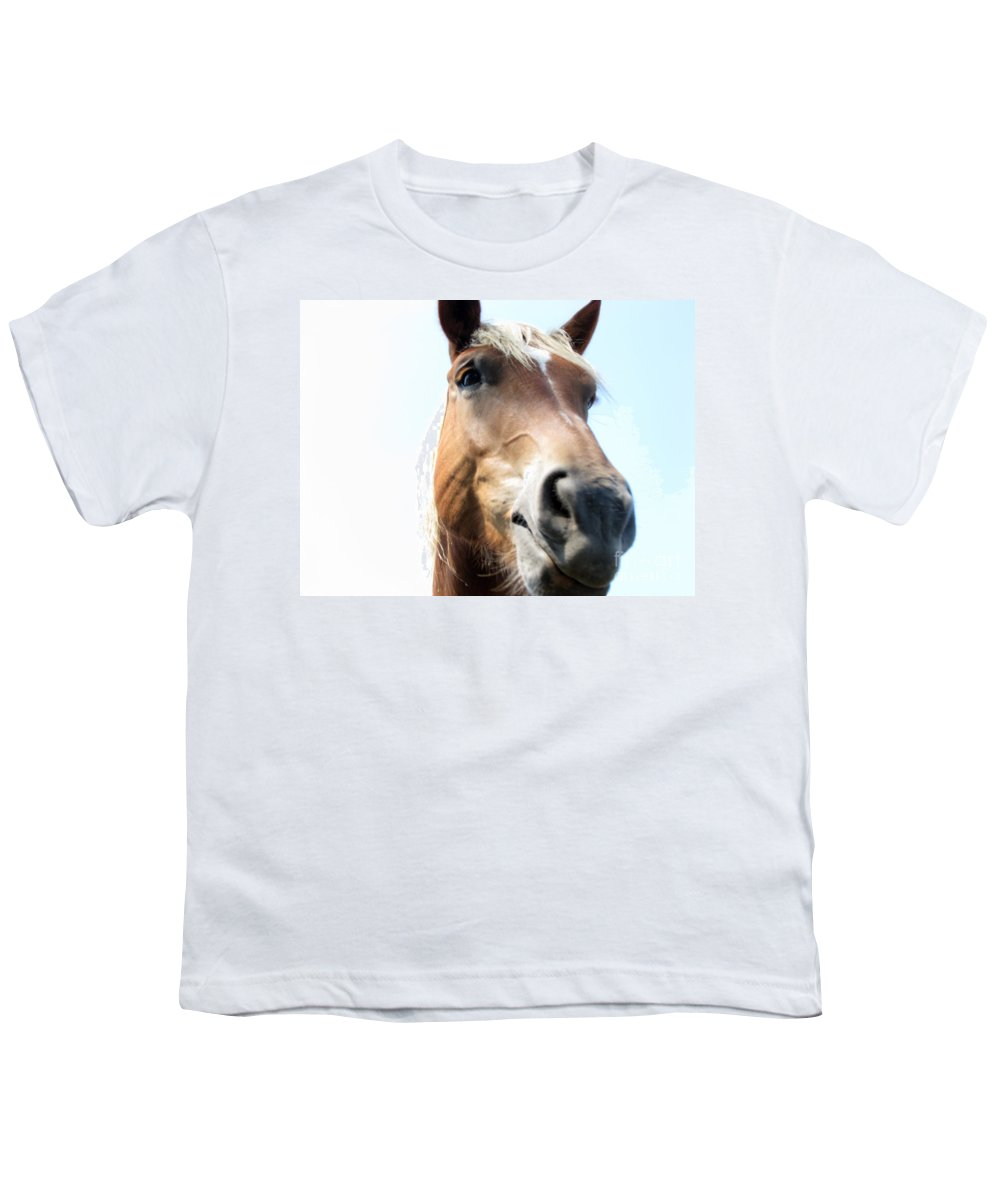 Horse Youth T-Shirt featuring the photograph Really by Amanda Barcon