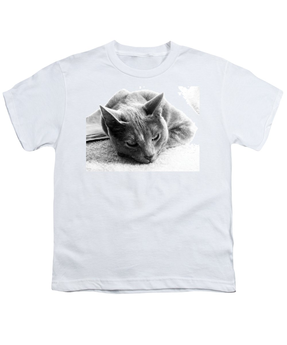 Cats Youth T-Shirt featuring the photograph Resting by Amanda Barcon