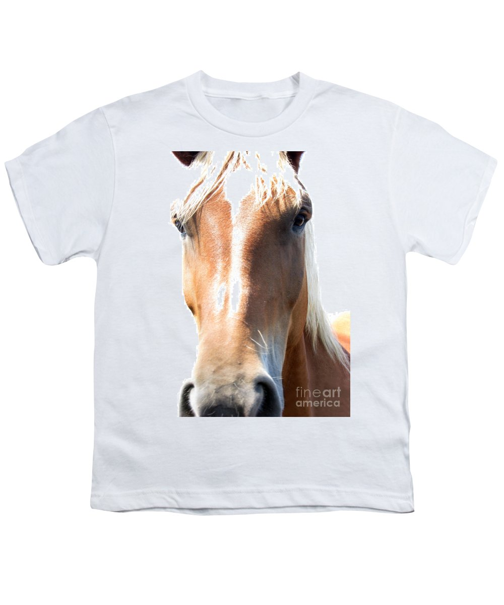 Horse Youth T-Shirt featuring the photograph Sweetie by Amanda Barcon