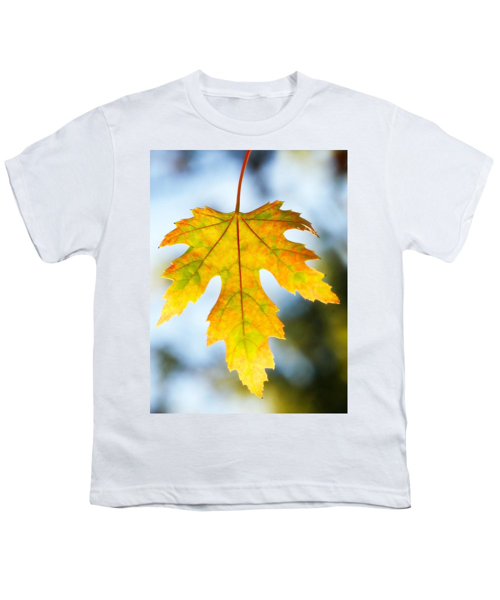 Maple Youth T-Shirt featuring the photograph The Maple Leaf by Marilyn Hunt