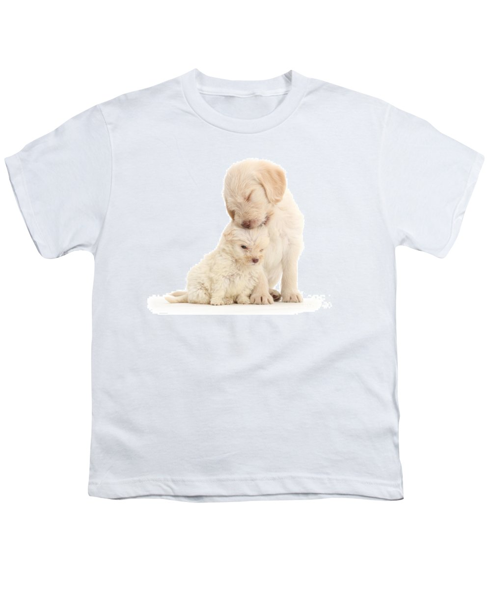 Golden Labradoodle Youth T-Shirt featuring the photograph They Call It Puppy Love by Warren Photographic
