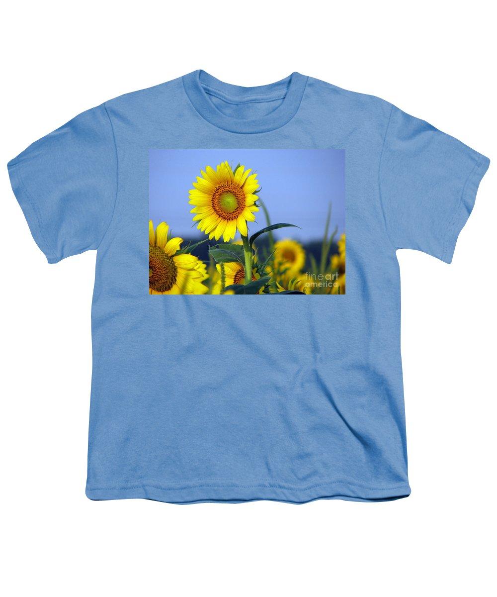 Sunflower Youth T-Shirt featuring the photograph Getting To The Sun by Amanda Barcon