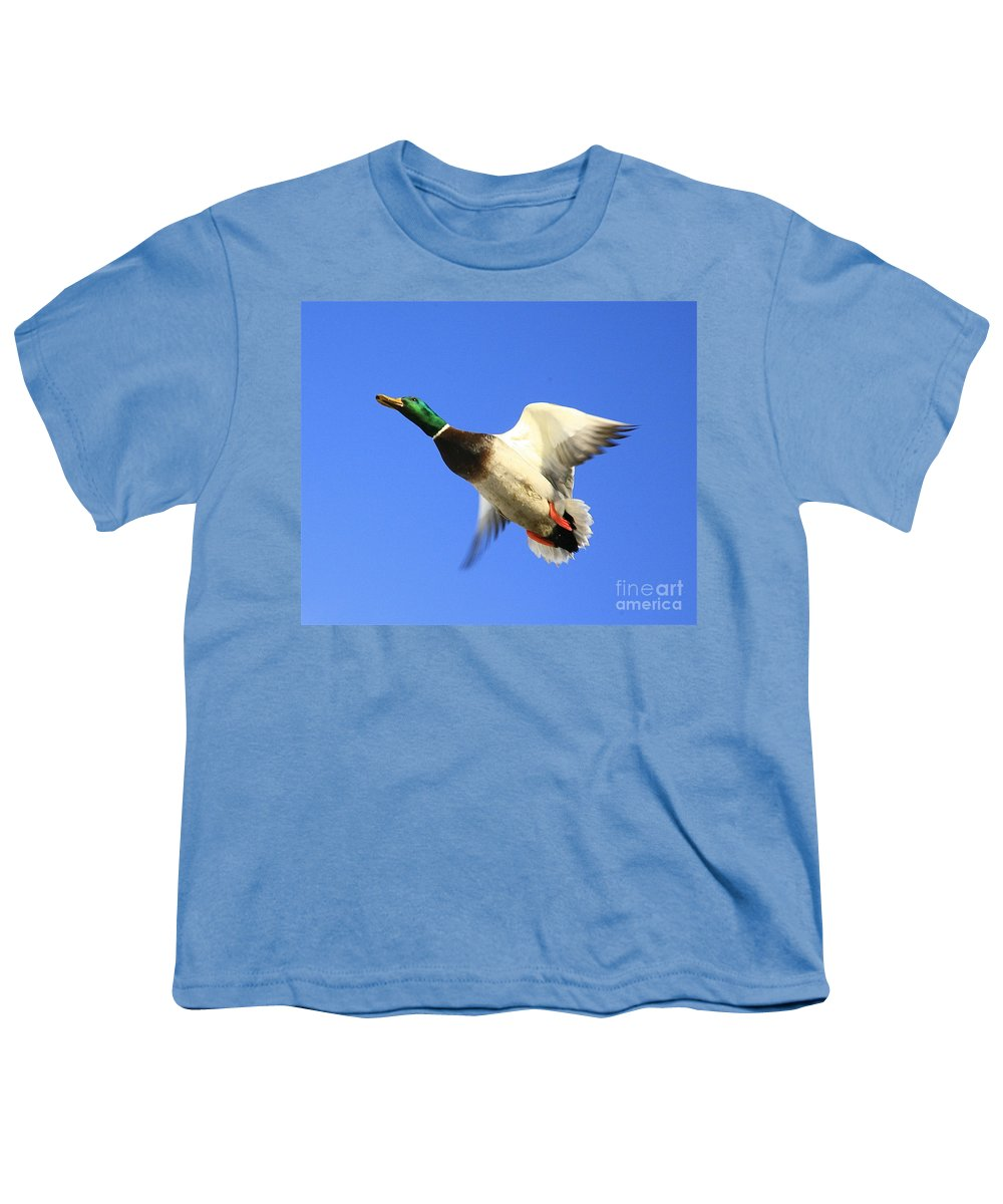 Duck Youth T-Shirt featuring the photograph Heads Up by Robert Pearson
