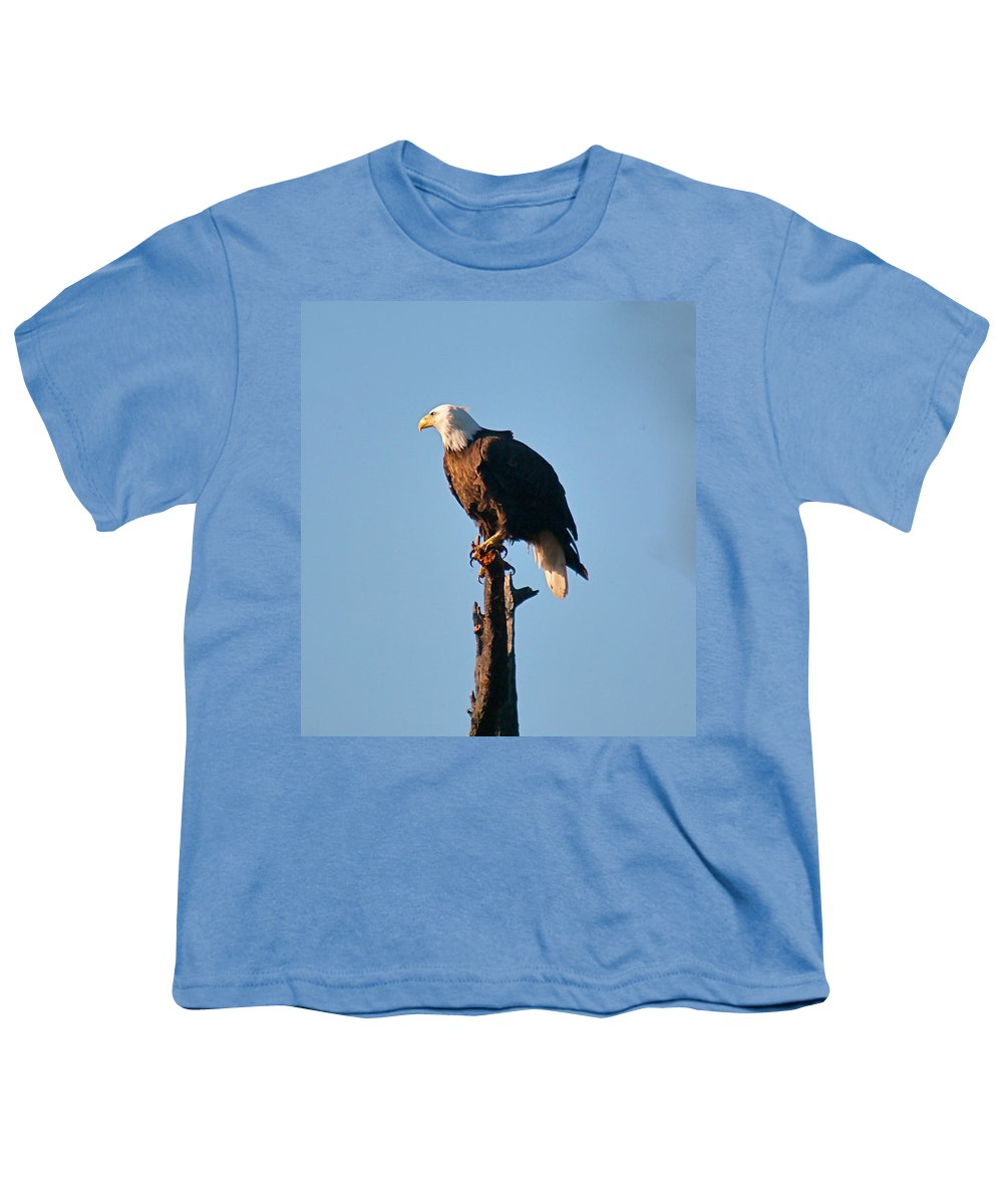 Eagle Youth T-Shirt featuring the photograph On The Look Out by Robert Pearson