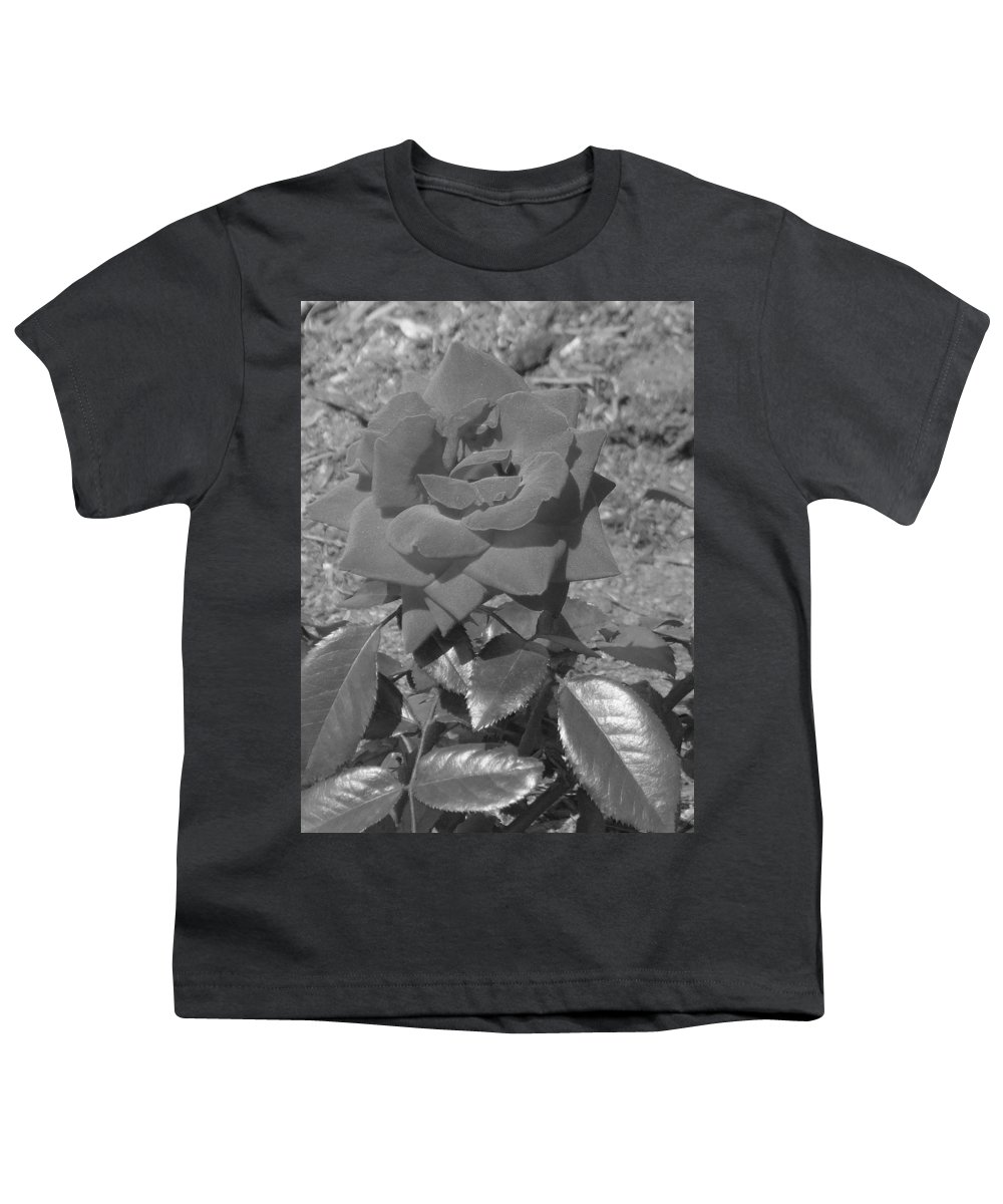 Rose Youth T-Shirt featuring the photograph Velvet Rose by Pharris Art
