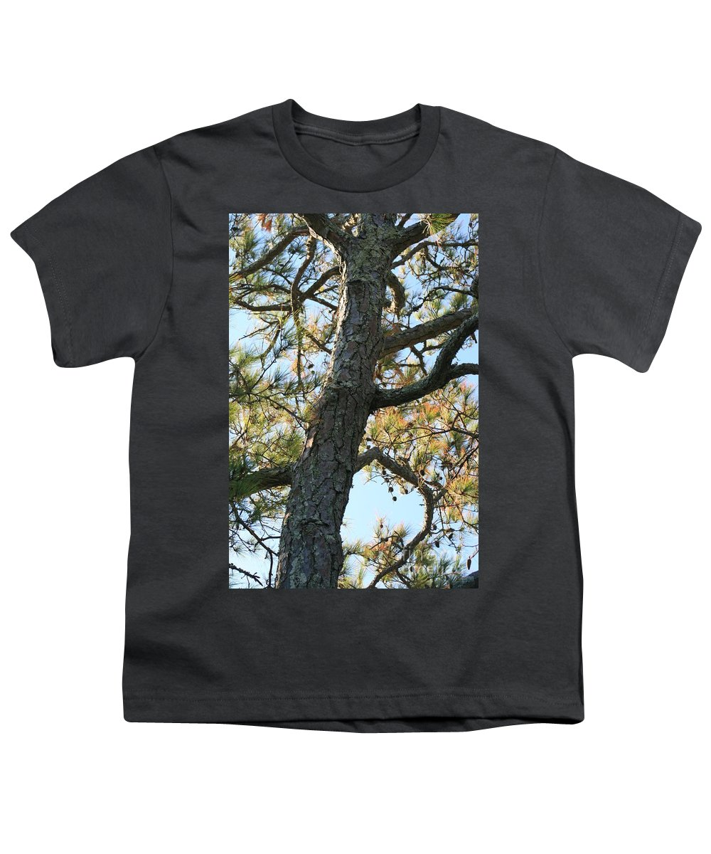 Tree Youth T-Shirt featuring the photograph Bald Head Tree by Nadine Rippelmeyer