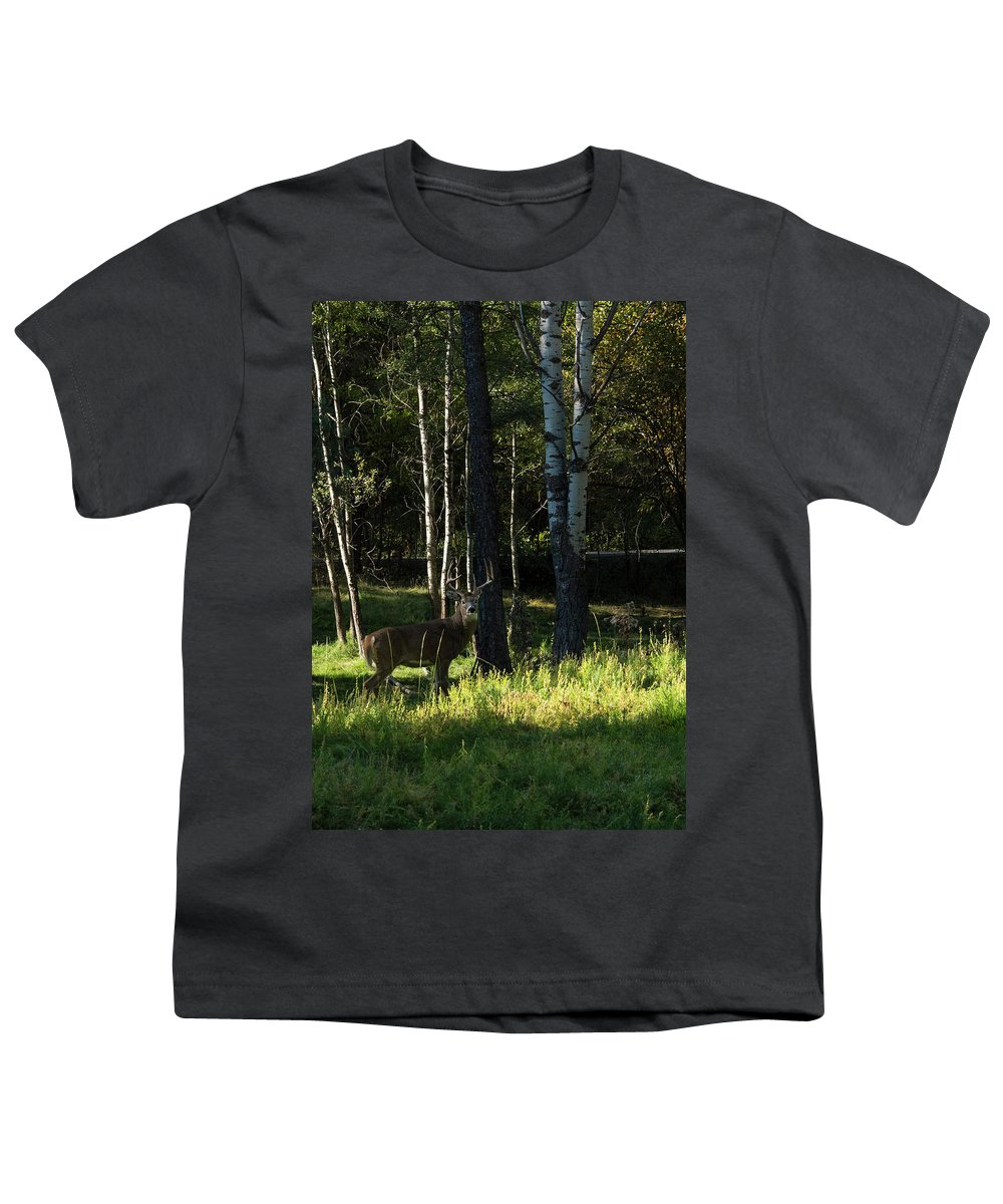 Deer Youth T-Shirt featuring the photograph Big Buck by Roy Nierdieck