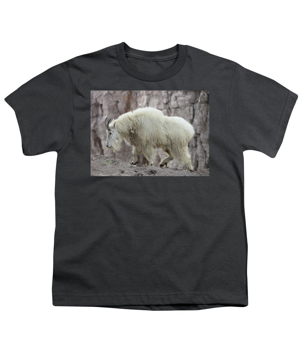 Billy Youth T-Shirt featuring the photograph Billy Goats Gruff by Whispering Peaks Photography