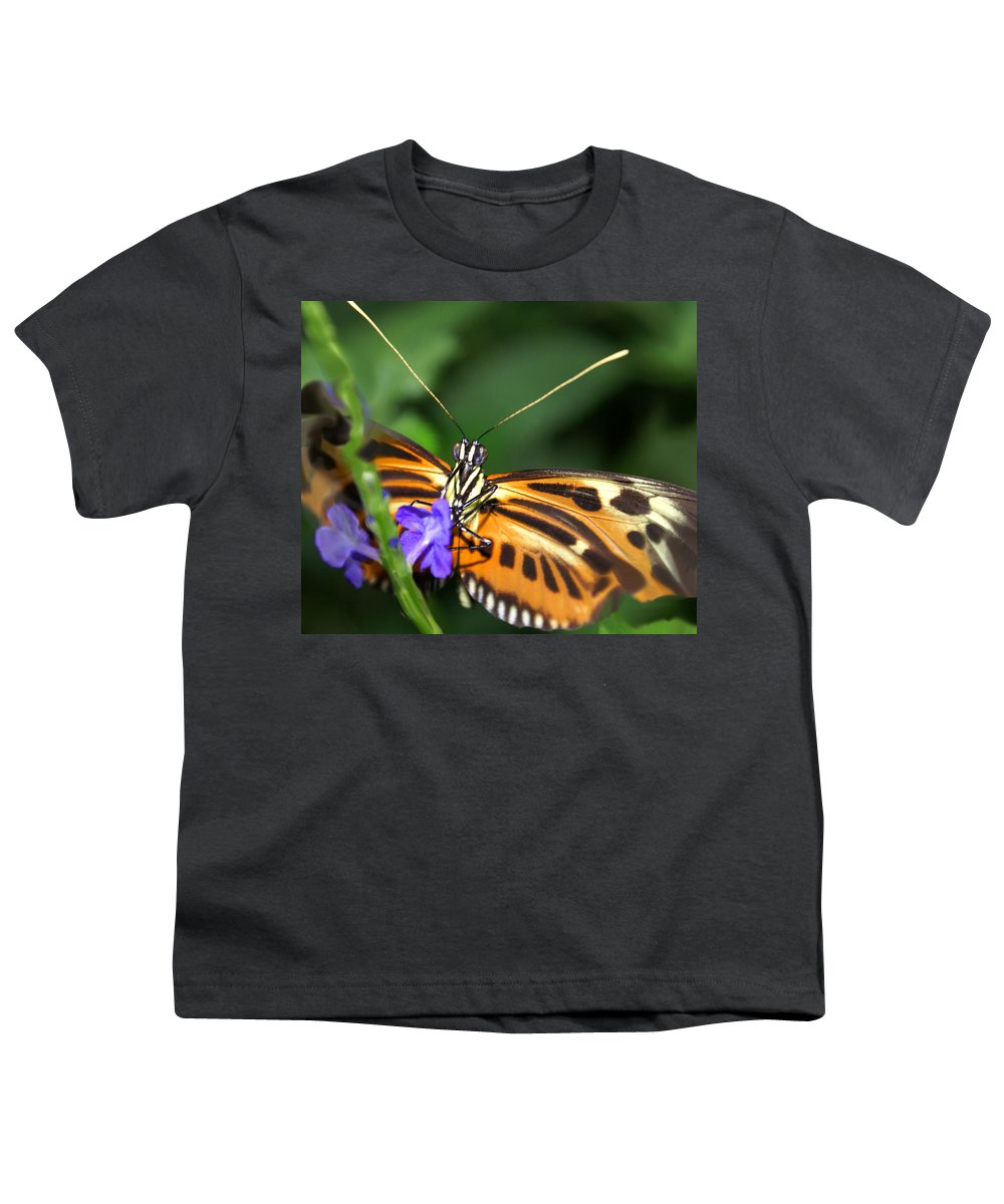 Butterfly Youth T-Shirt featuring the photograph Butterfly 2 Eucides Isabella by Heather Coen