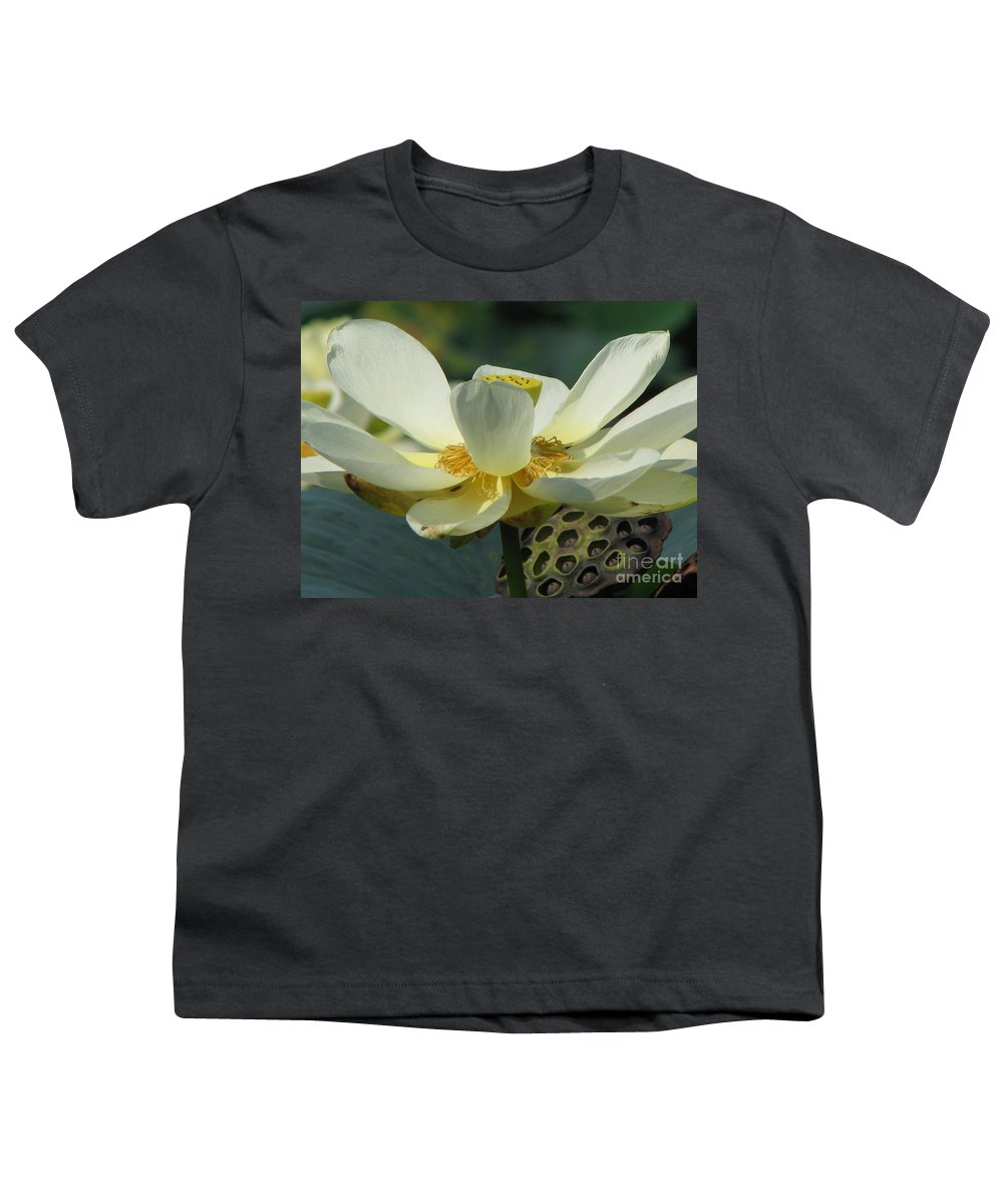 Lotus Youth T-Shirt featuring the photograph Calm by Amanda Barcon