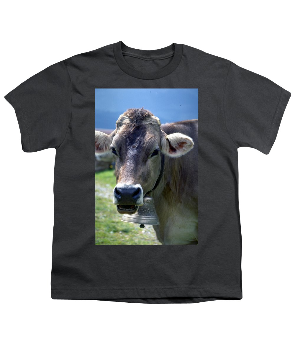 Cow Youth T-Shirt featuring the photograph Cow by Flavia Westerwelle