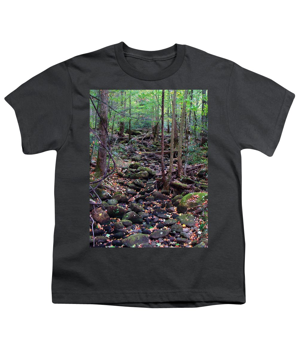 River Youth T-Shirt featuring the photograph Dry River Bed- Autumn by Nancy Mueller