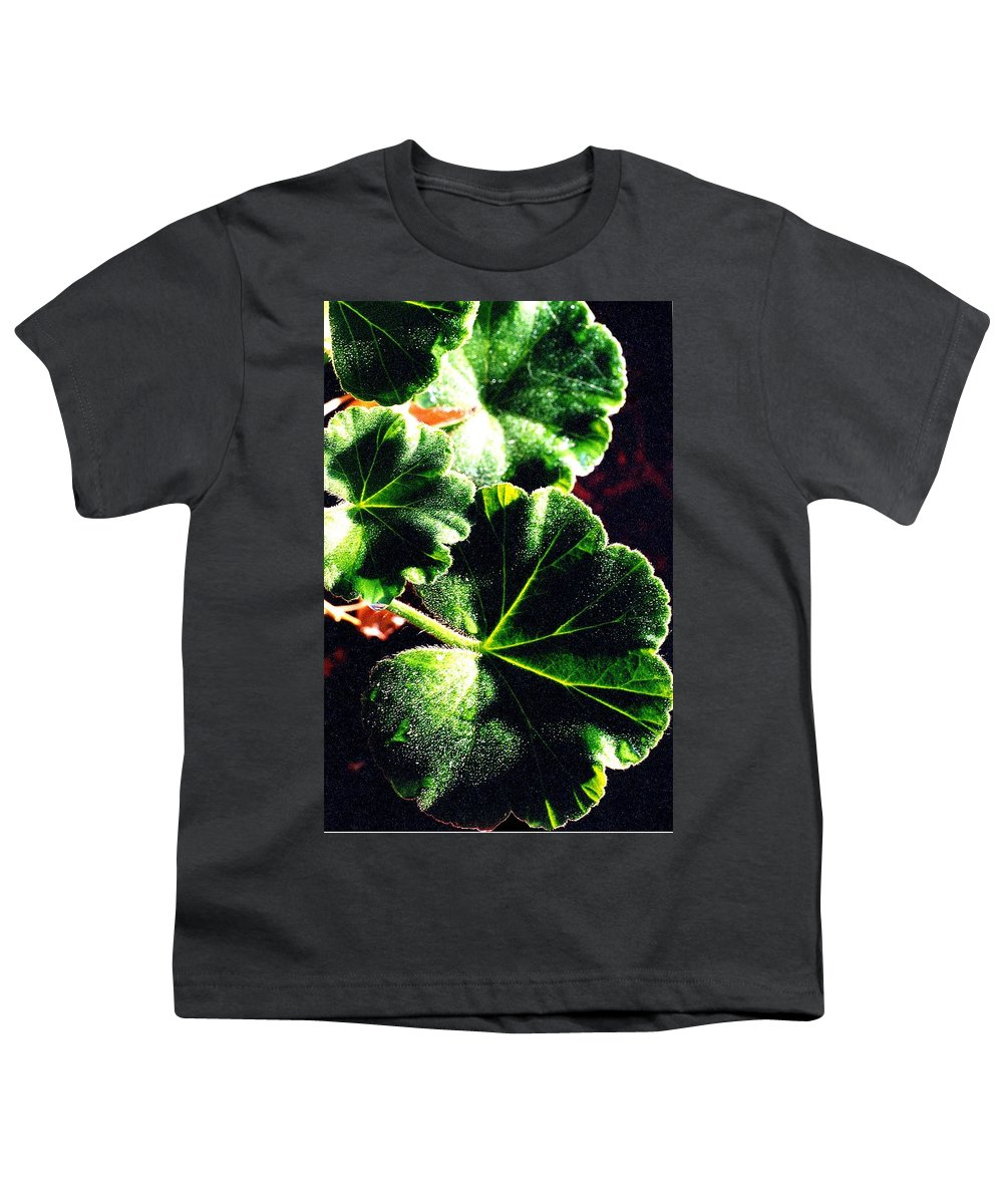 Geraniums Youth T-Shirt featuring the photograph Geranium Leaves by Nancy Mueller