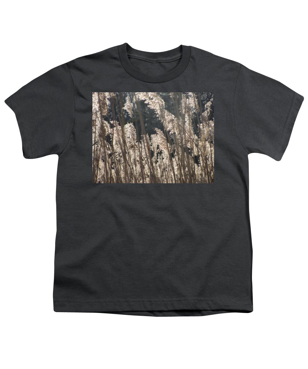 Golden Brown Grass Photographs Canvas Prints Reeds Nuetral Colors Landscape Winter Wetland Images Winter Marsh Photo Prints Maryland Cheasapeake Tributary Youth T-Shirt featuring the photograph Golden Brown by Joshua Bales