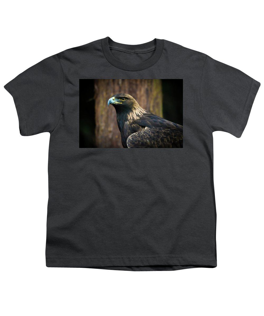 Eagle Youth T-Shirt featuring the photograph Golden Eagle 5 by Jason Brooks