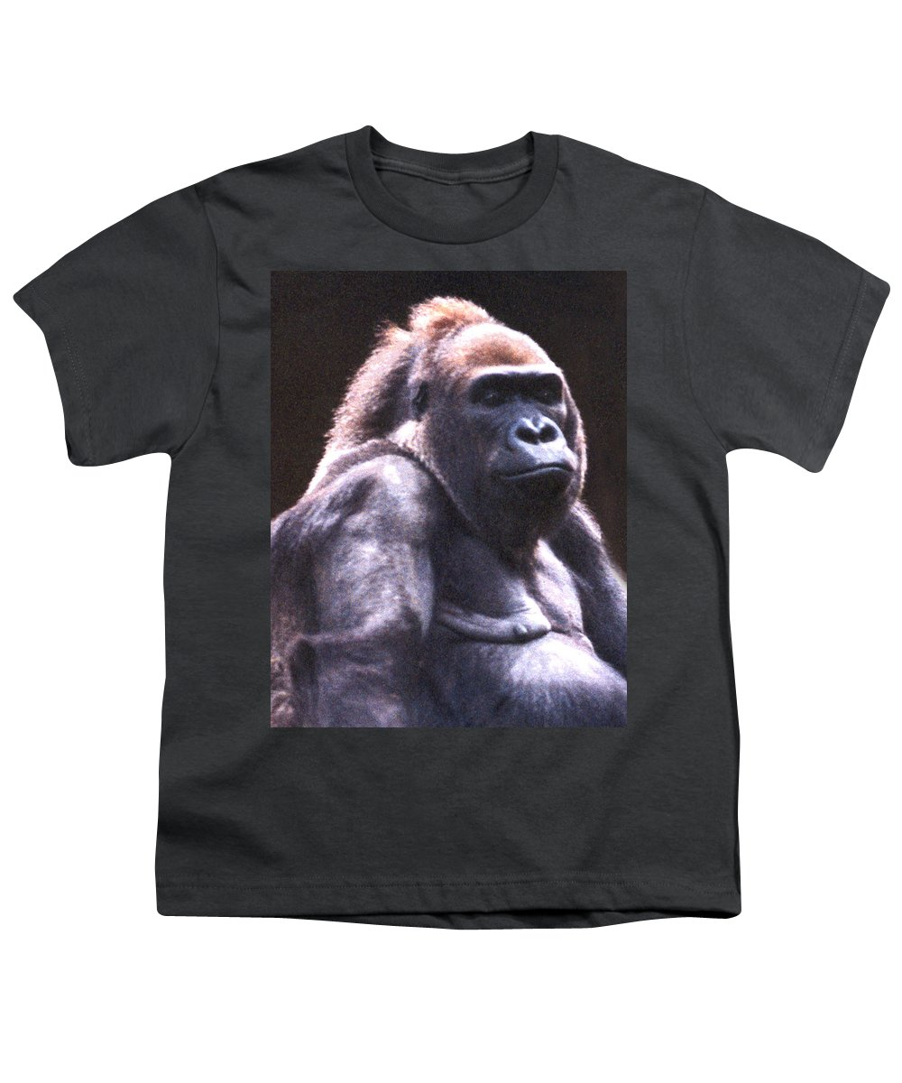 Gorilla Youth T-Shirt featuring the photograph Gorilla by Steve Karol