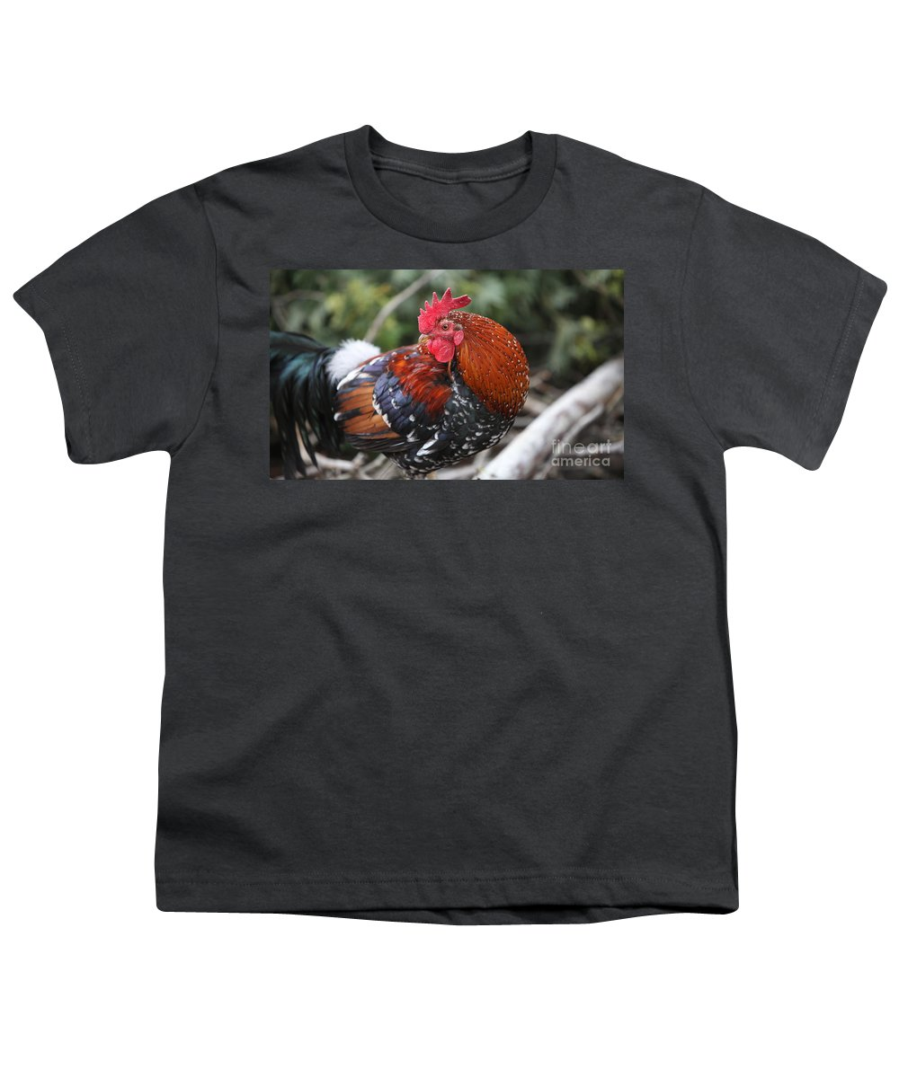 Rooster Youth T-Shirt featuring the photograph Kauai Rooster by Nadine Rippelmeyer
