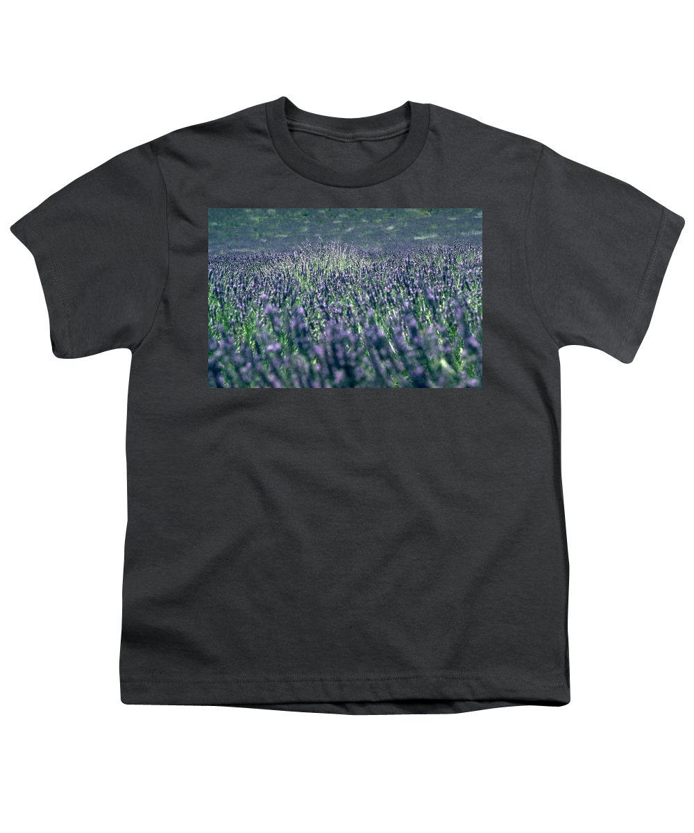 Lavender Youth T-Shirt featuring the photograph Lavender by Flavia Westerwelle