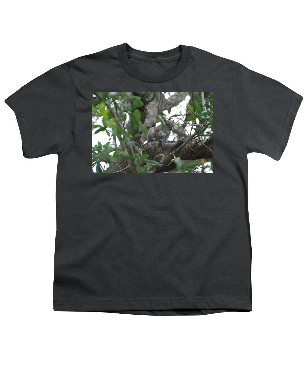Squirrel Youth T-Shirt featuring the photograph Lending A Helping Hand by Rob Hans