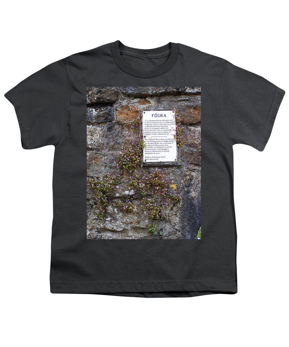 Irish Youth T-Shirt featuring the photograph Living Wall At Donegal Castle Ireland by Teresa Mucha
