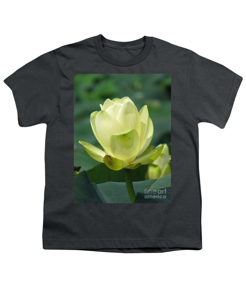 Lotus Youth T-Shirt featuring the photograph Lotus by Amanda Barcon