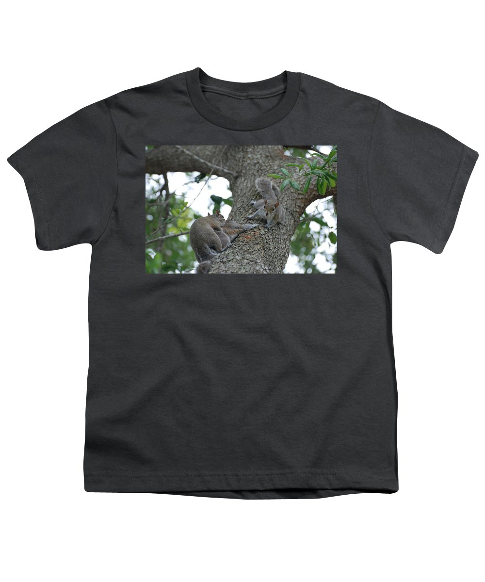 Squirrel Youth T-Shirt featuring the photograph Luck Be A Lady by Rob Hans