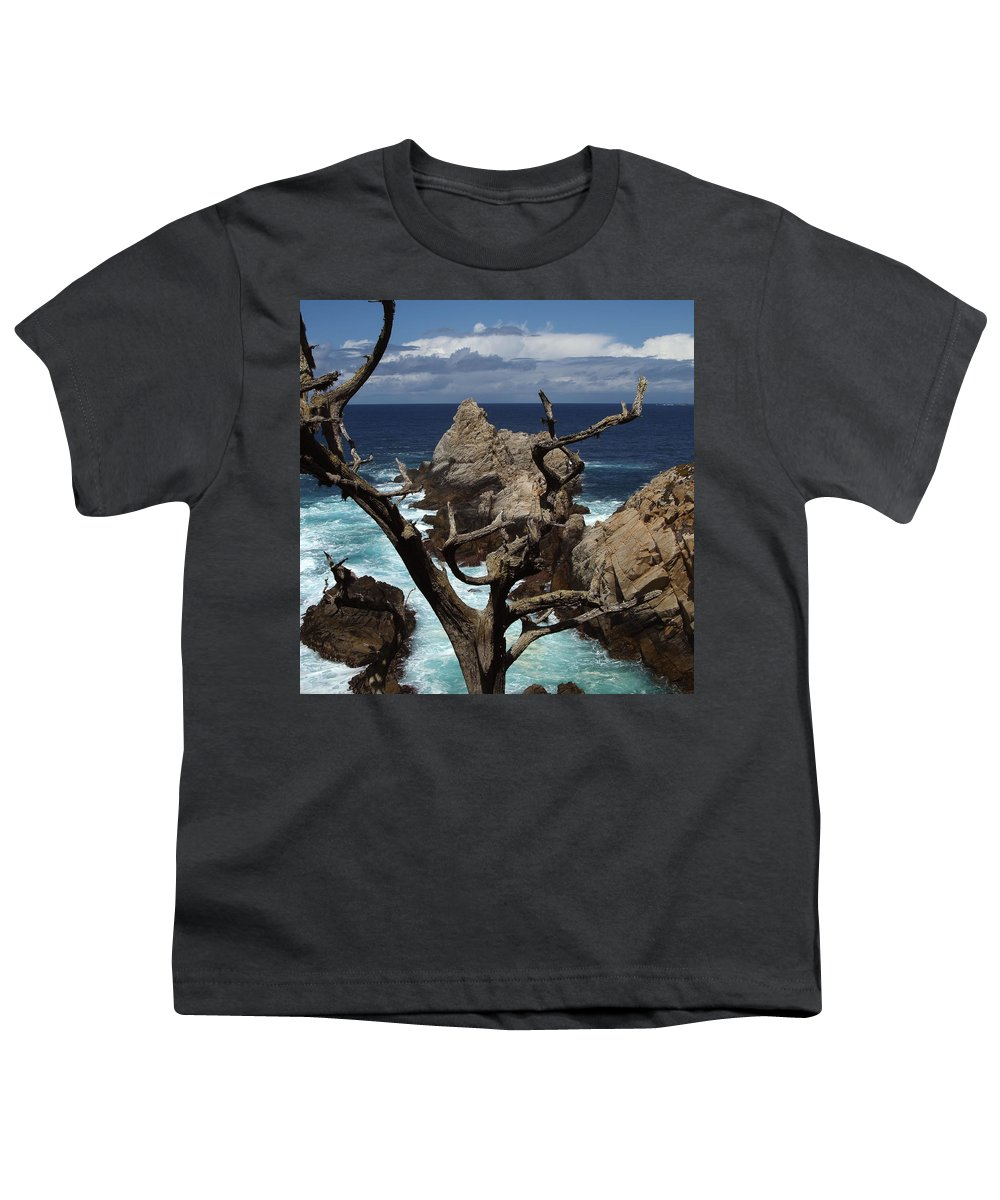 Carmel Youth T-Shirt featuring the photograph Point Lobos Rocks And Branches by Charlene Mitchell