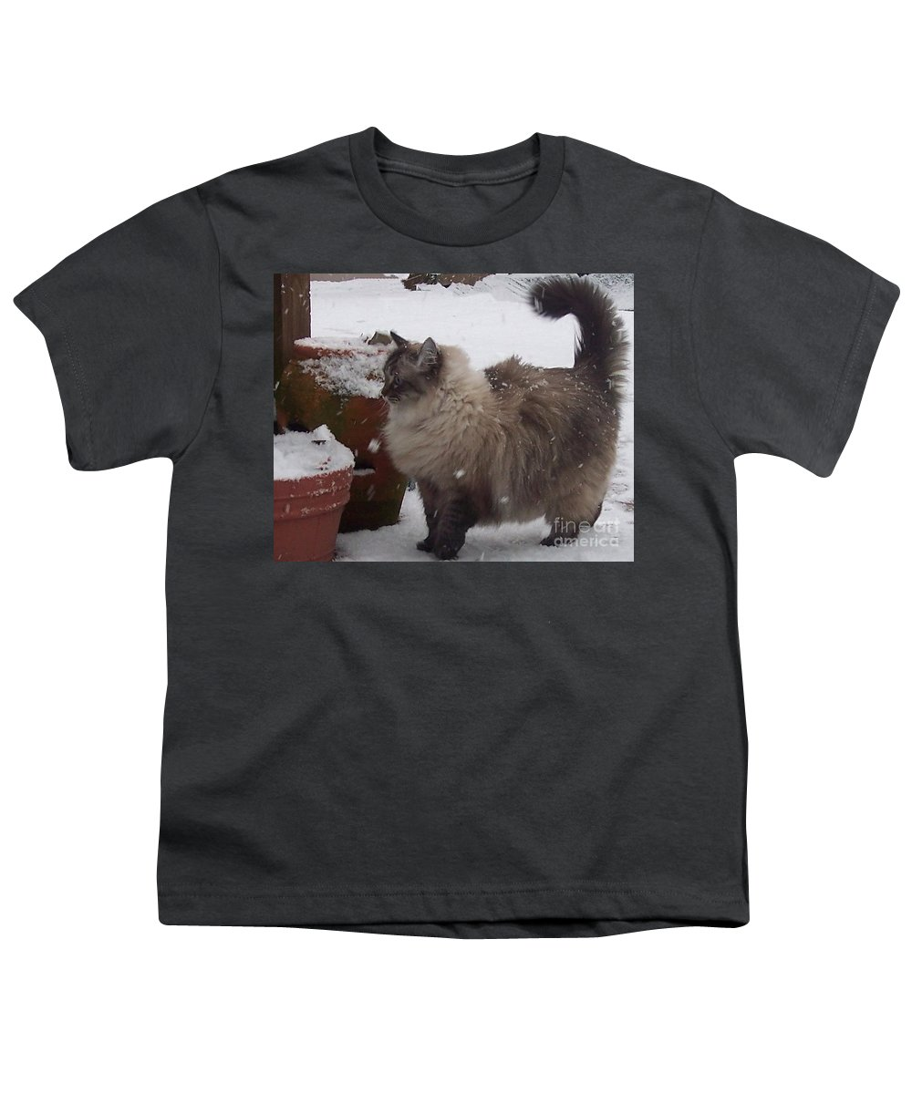 Cats Youth T-Shirt featuring the photograph Snow Kitty by Debbi Granruth