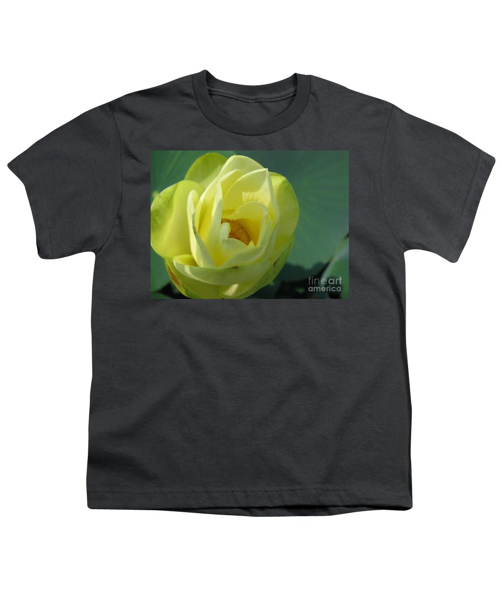 Lotus Youth T-Shirt featuring the photograph Softly by Amanda Barcon