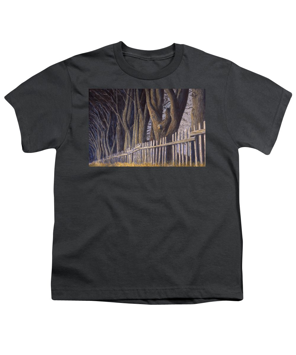 Bird House Youth T-Shirt featuring the painting The Bird House by Jerry McElroy