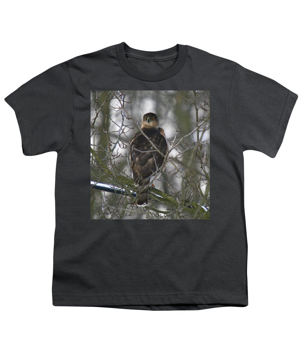 Bird Youth T-Shirt featuring the photograph The Hawks Have Eyes by Robert Pearson