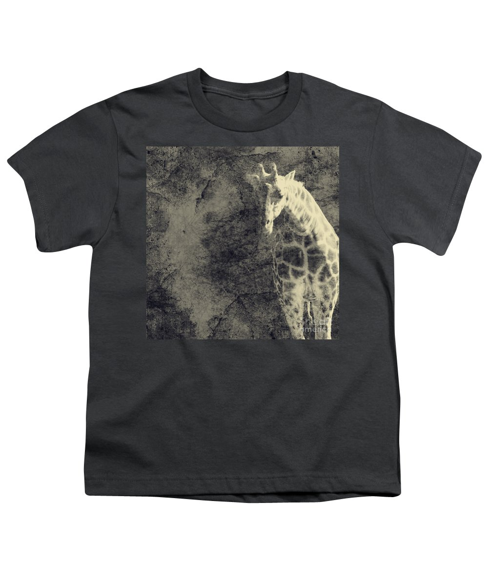Dipasquale Youth T-Shirt featuring the photograph ...the Vast Expanses Of The Earth by Dana DiPasquale