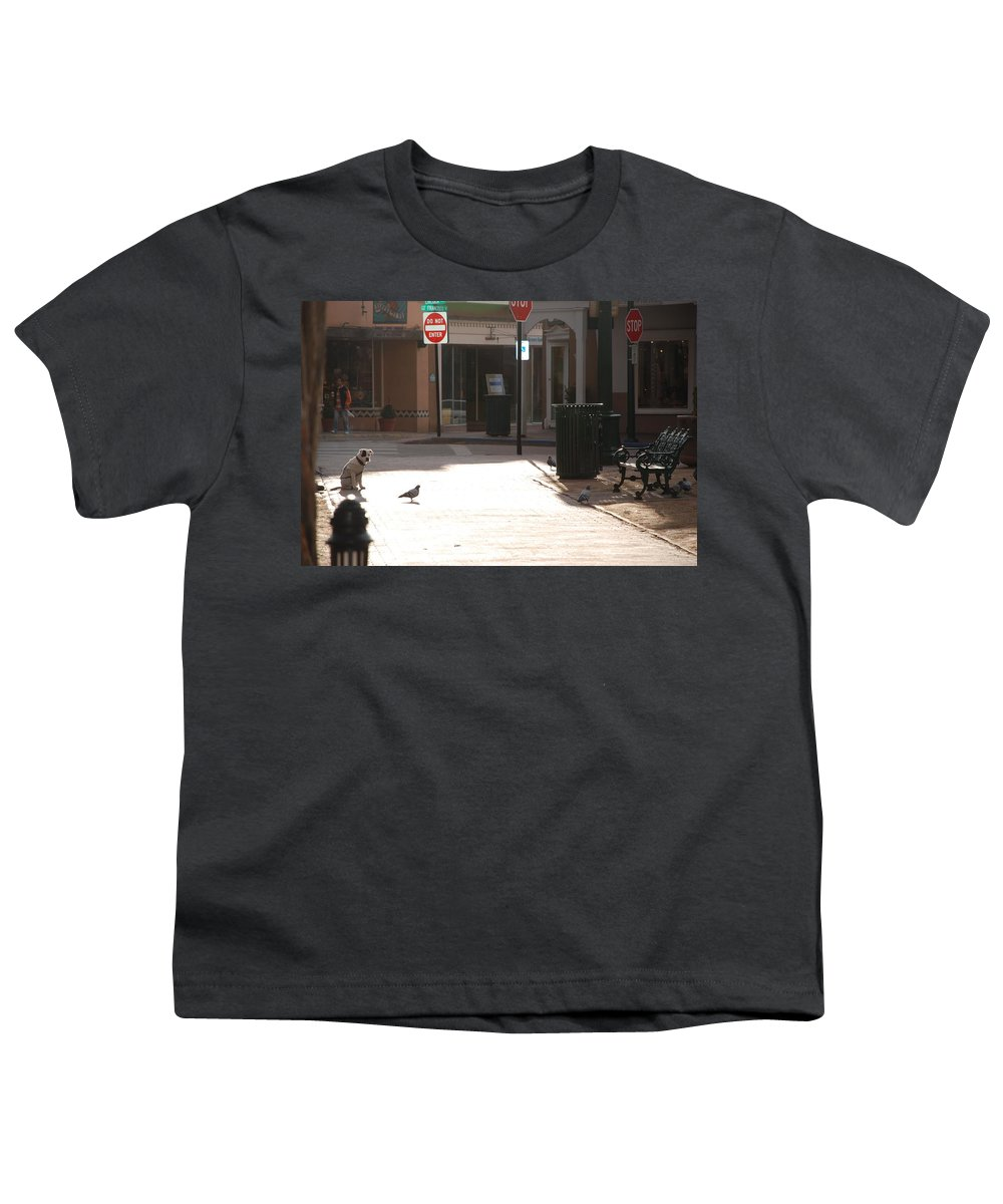 Dog Youth T-Shirt featuring the photograph Why Question Mark by Rob Hans