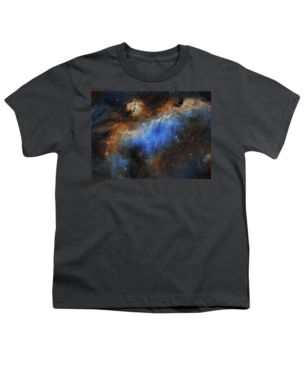 Astronomy Youth T-Shirt featuring the photograph The Seagull Nebula by Prabhu Astrophotography