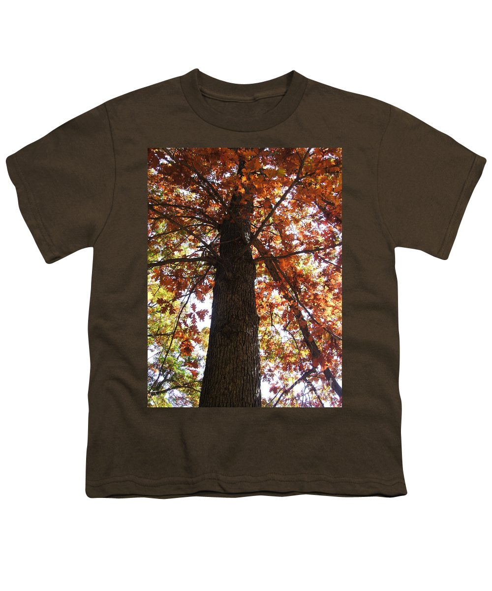 Tree Youth T-Shirt featuring the photograph Up Fall by Minding My Visions by Adri and Ray