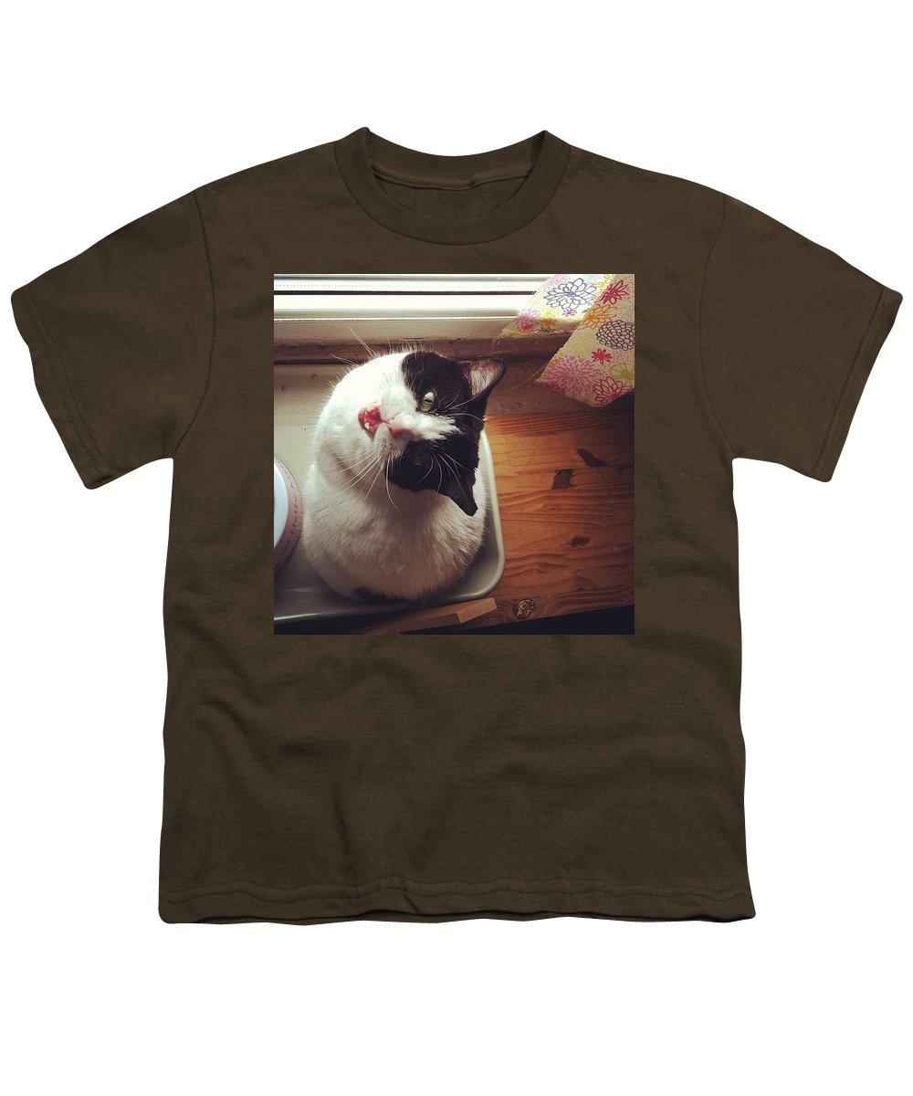 Catsofinstagram Youth T-Shirt featuring the photograph the Bowl's Empty! #cat by Katie Cupcakes