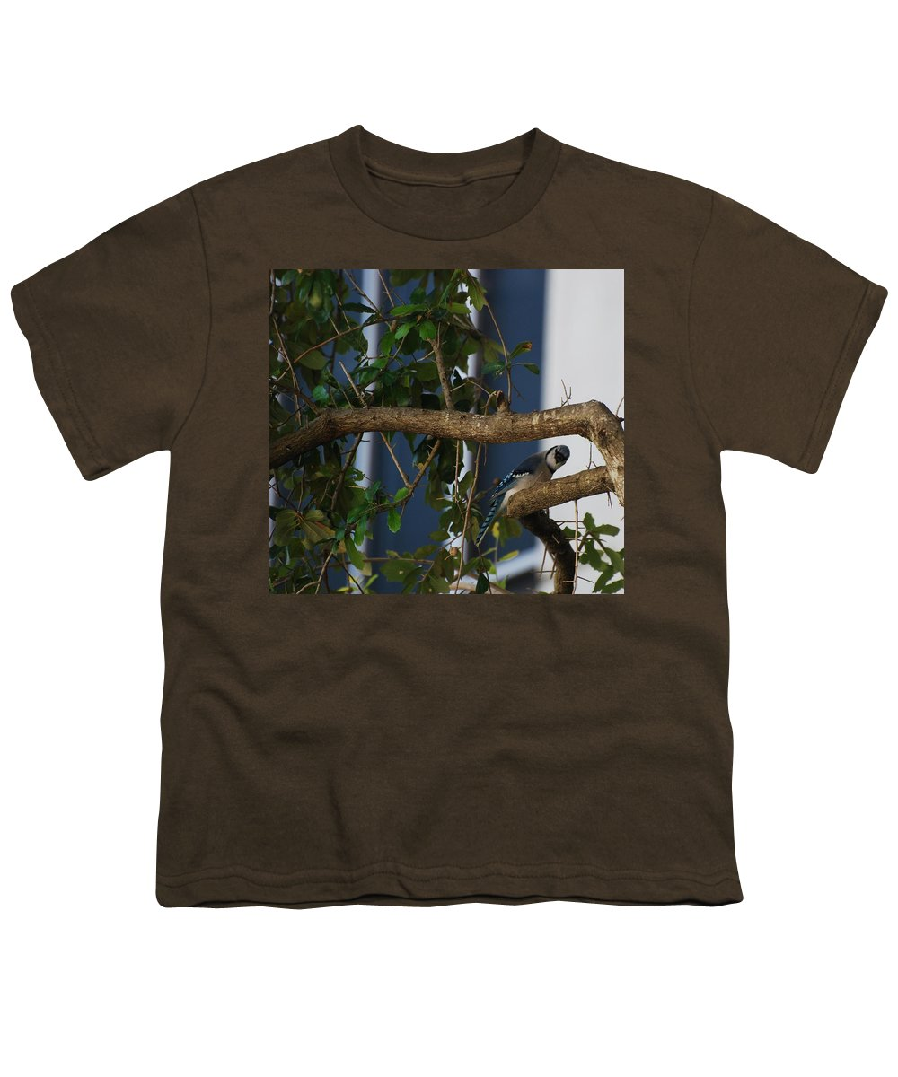Birds Youth T-Shirt featuring the photograph Blue Bird by Rob Hans