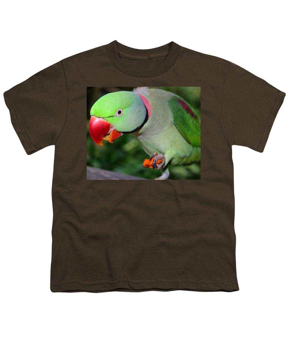 Alexandrine Parrot Youth T-Shirt featuring the photograph Alexandrine Parrot Feeding by Ralph A Ledergerber-Photography