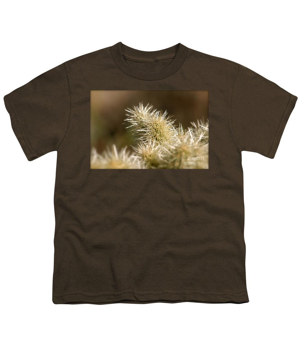 Cactus Youth T-Shirt featuring the photograph Cacti by Nadine Rippelmeyer