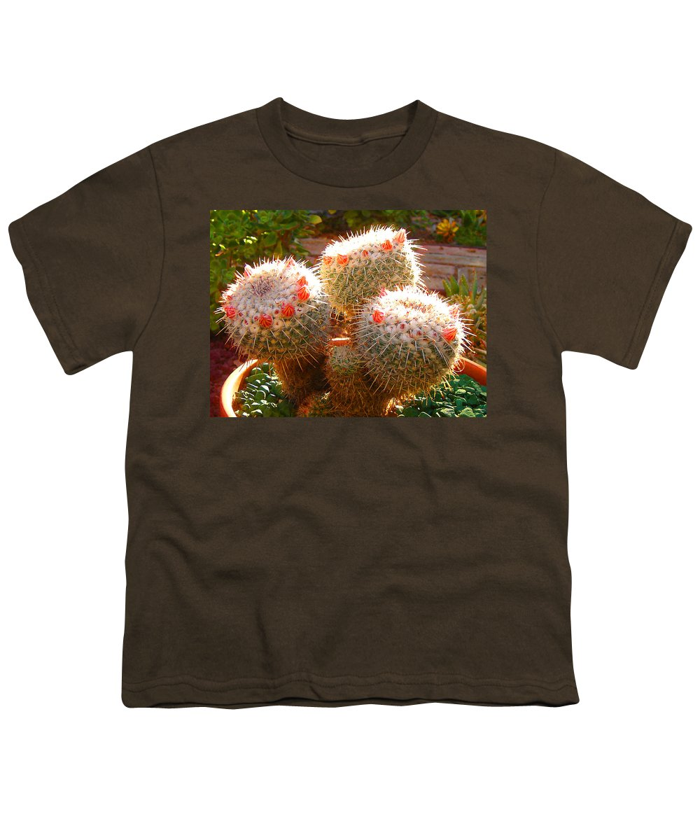 Landscape Youth T-Shirt featuring the photograph Cactus Buds by Amy Vangsgard