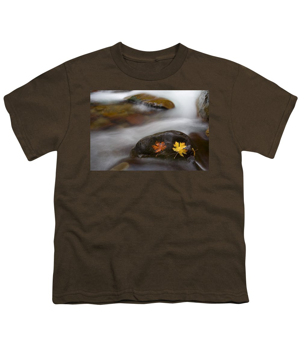 Leaves Youth T-Shirt featuring the photograph Castaways by Mike Dawson
