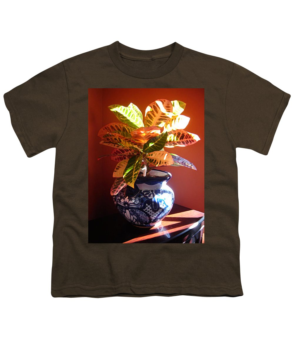 Potted Plant Youth T-Shirt featuring the photograph Croton In Talavera Pot by Amy Vangsgard