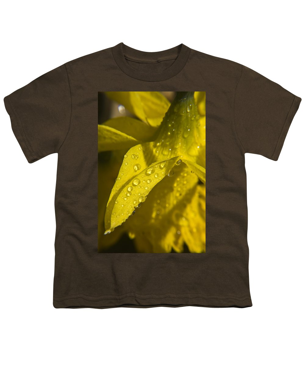 Daffodil Youth T-Shirt featuring the photograph Daffodil Dew by Teresa Mucha
