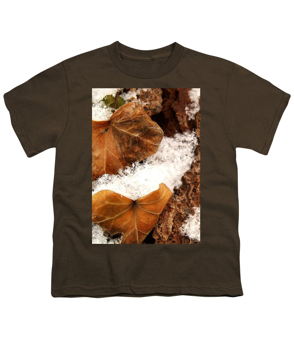 Fall Youth T-Shirt featuring the photograph Fall And Winter by Gaby Swanson