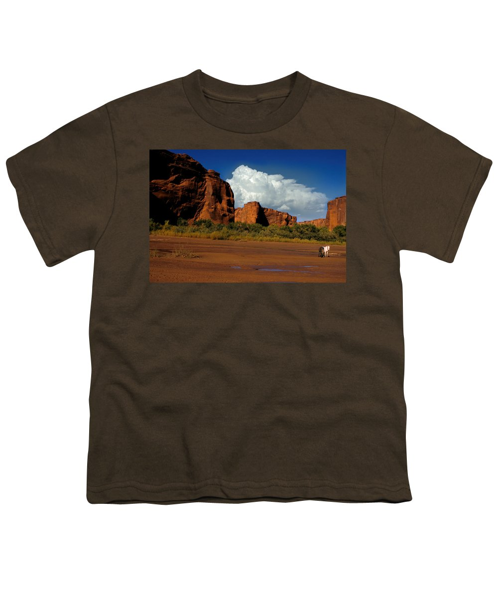 Horses Youth T-Shirt featuring the photograph Indian Ponies In The Canyon by Jerry McElroy