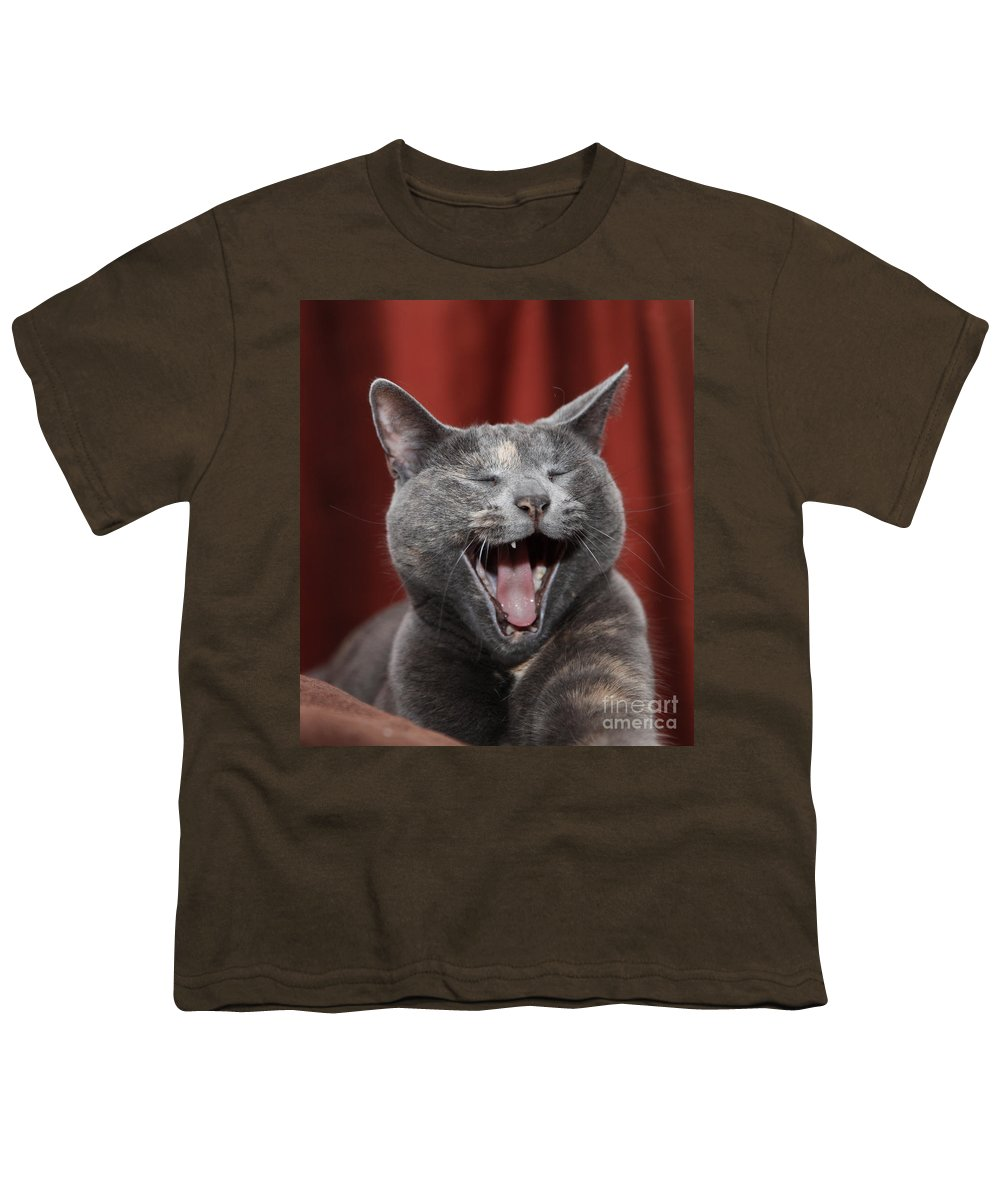 Kitty Youth T-Shirt featuring the photograph Laughing Kitty by Amanda Barcon