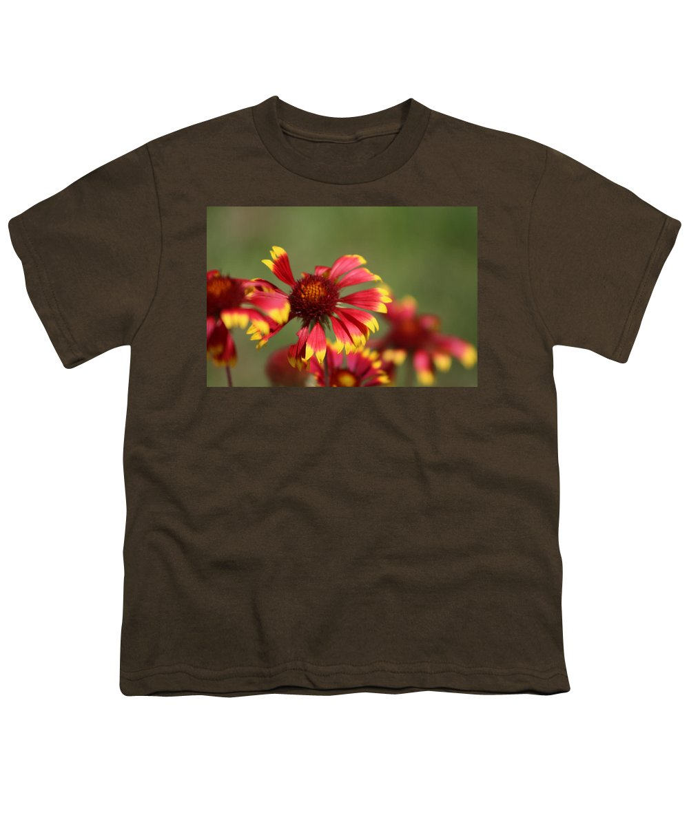 Coneflower Youth T-Shirt featuring the photograph Lemon Yellow and Candy Apple Red Coneflower by Colleen Cornelius