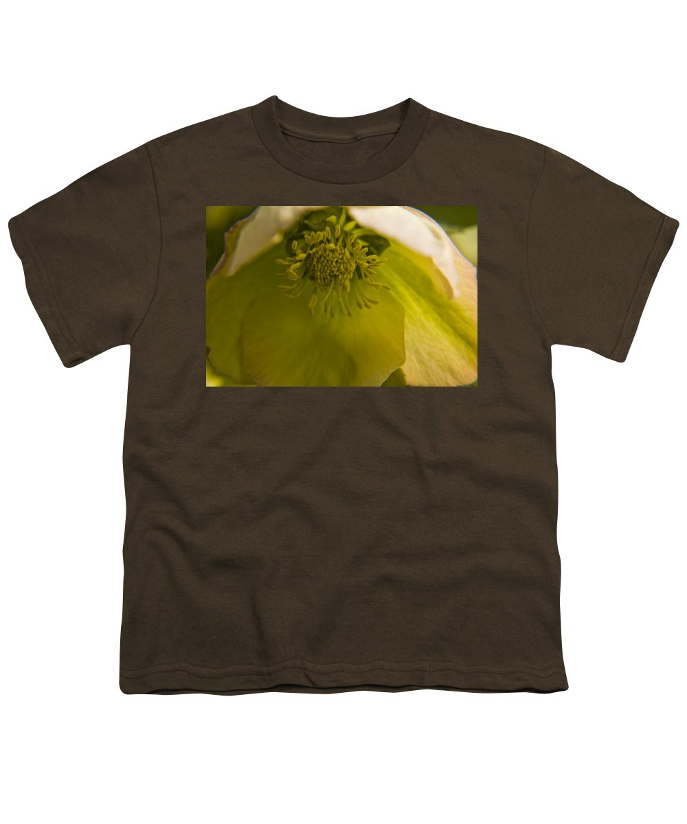 Flower Youth T-Shirt featuring the photograph Lenten Rose Interior by Teresa Mucha