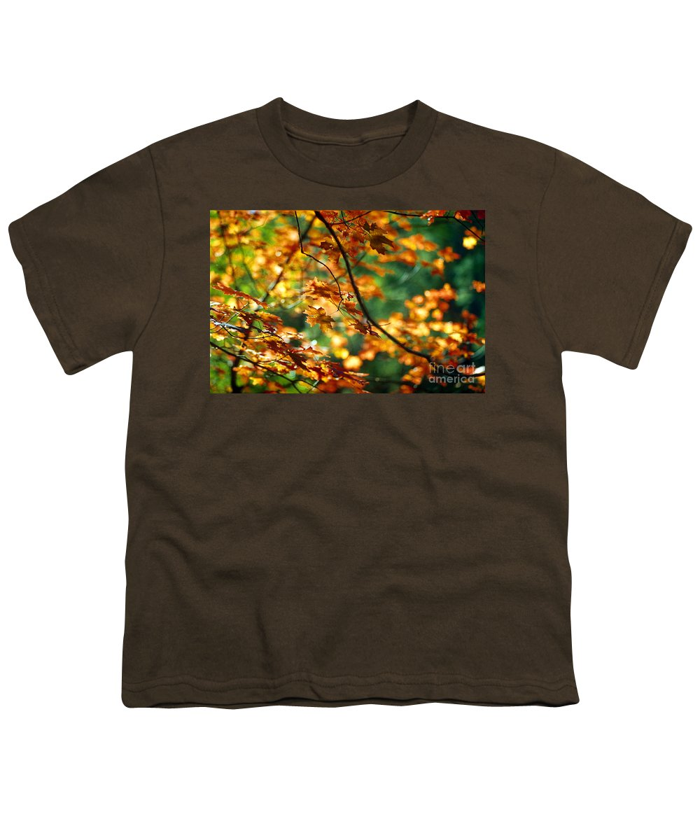 Fall Color Youth T-Shirt featuring the photograph Lost In Leaves by Kathy McClure